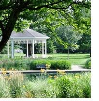 Trees and a pond, tall grass and a white gazebo