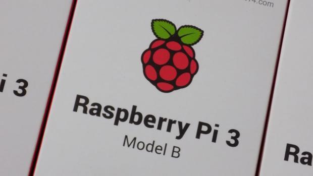 Raspberry Pi logo - a little raspberry