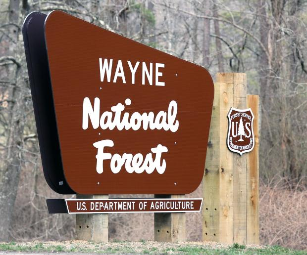 Brown sign on pole in woods saying Wayne National Forest