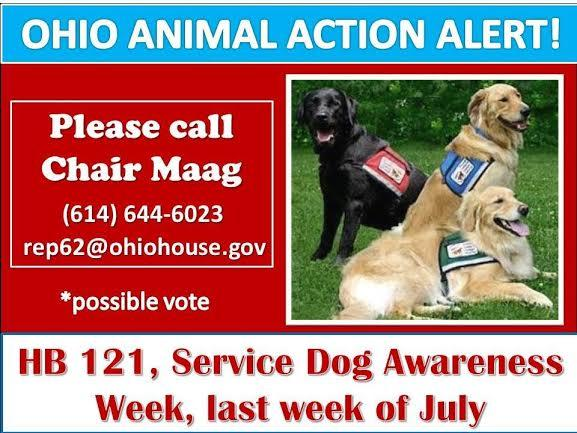 Action alert about dog bill