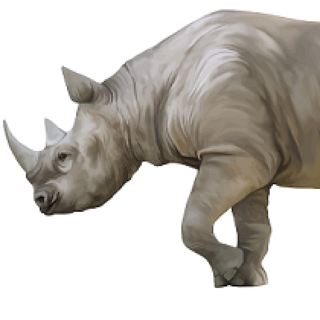 Front half of a side view of a rhino with a big horn