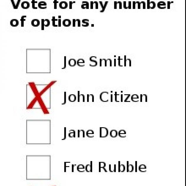 Ballot with x's for some candidates