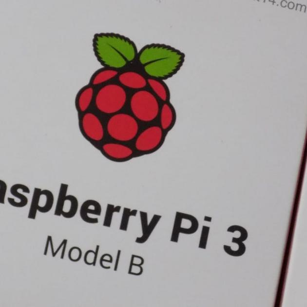 Raspberry Pi logo - a little raspberry