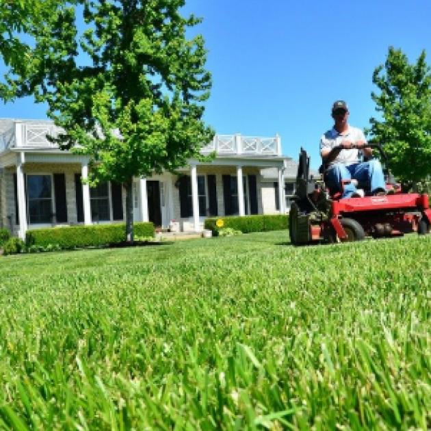 Guy riding a lawn mower