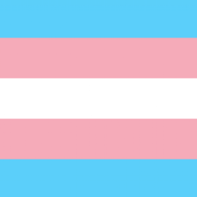 Pink, white and light blue striped flag, the trans flag