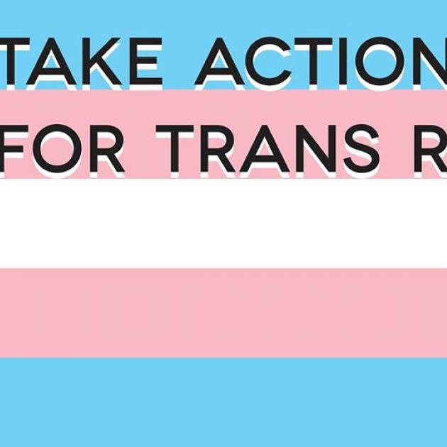 Blue, pink an white flag background with words take action for trans rights