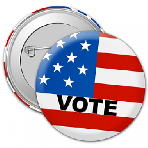 Lapel button that says Vote with a flag on it