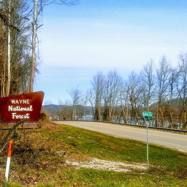 Road leading into forest with sign saying Wayne National Forest