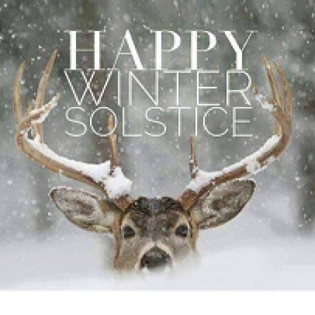 Head of a deer peering over snow against trees and the words Happy Winter Solstice