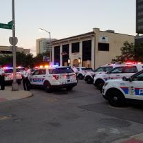 Lots of police cars