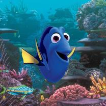 Photo of blue fish from movie