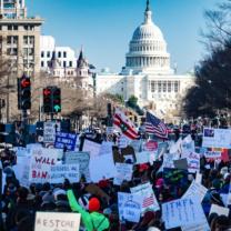 Protestors at the Capitol