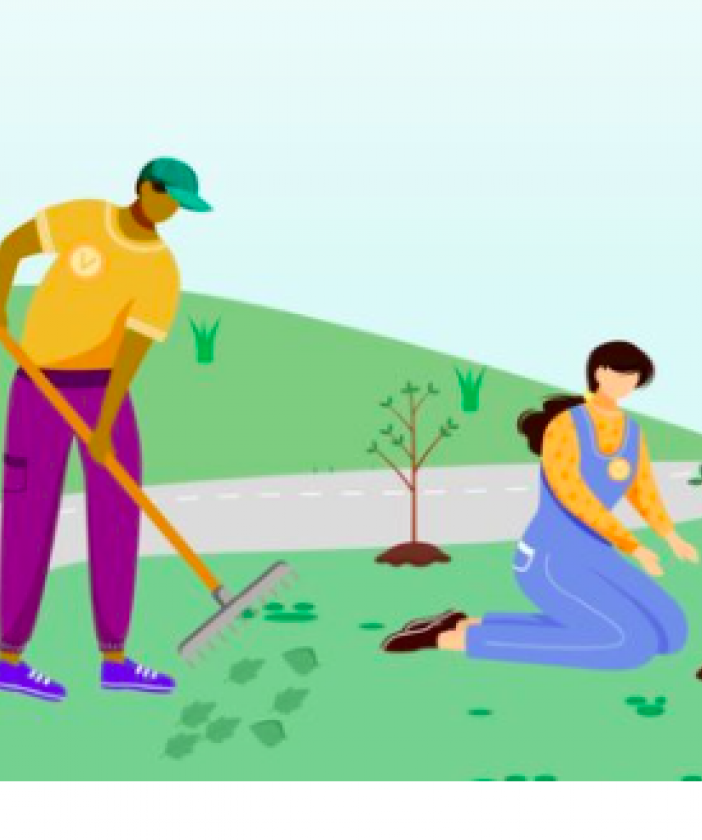 People planting trees