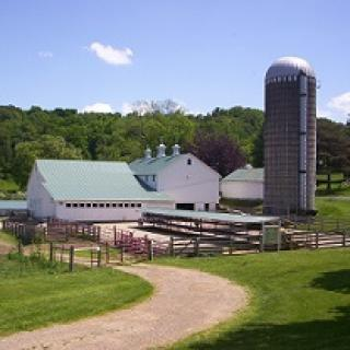 A barn, silo, fenced in yard, curvy road leading to it, grass on the sides and hill with trees in background