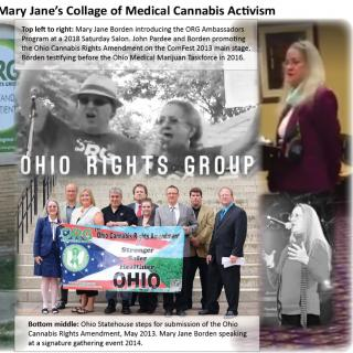 Collage of pictures from Mary Jane's activism