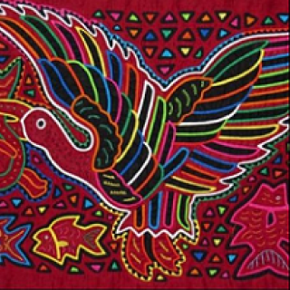 Artistic drawing of bird with different colored feathers
