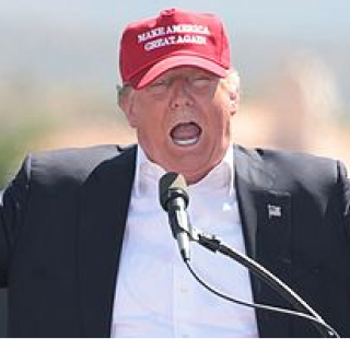 Trump in red baseball MAGA hat with mouth open
