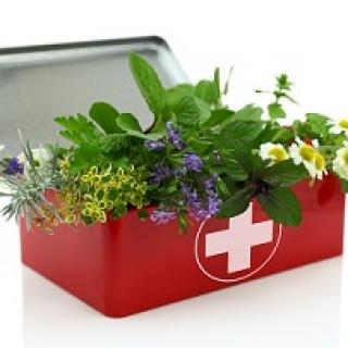 Red medical box with a white cross on the front full of flowers