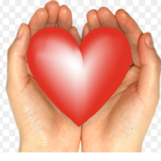 Two white hands holding a big red heart